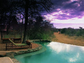 zwembad prive lodge kruger