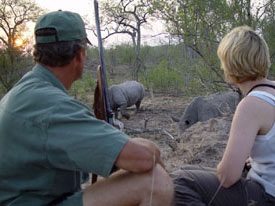 gamewalk safari zuid afrika